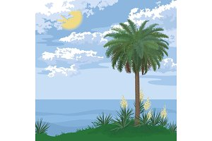 Tropical island with palm and