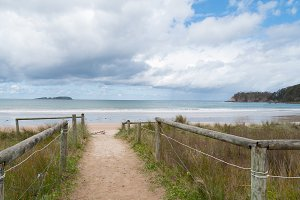 Entrance to the beach. Inviting