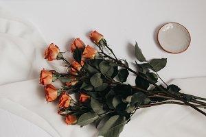 Tangerine Rose Styled Stock 055