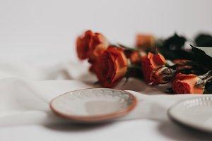 Tangerine Rose Styled Stock 069
