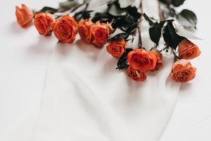 Tangerine Rose Styled Stock 073