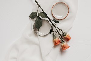 Tangerine Rose Styled Stock 081