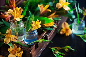 Spring floral concept with yellow