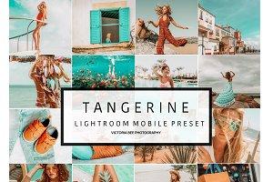 5 Mobile Lightroom presets TANGERINE