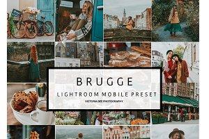 Mobile Lightroom Preset BRUGGE