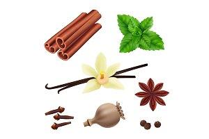 Herbs and spices. Cinnamon vegan