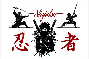 Ninja warrior vector illustration