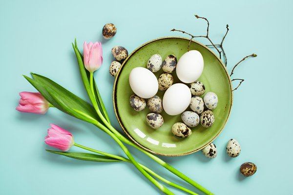Chicken and quail easter eggs