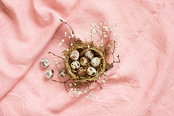 Easter - small nest with quail eggs
