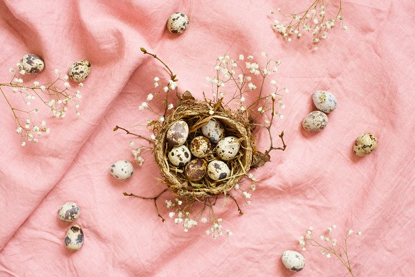 Small nest with quail Easter eggs