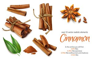 Cinnamon Realistic Set