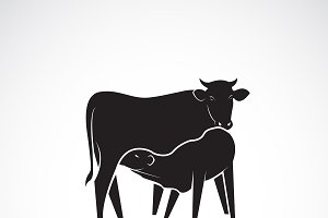 Vector of cow and calf. Farm Animal