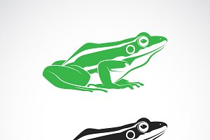 Vector of green frogs and black frog