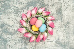 Easter eggs pink tulip flowers