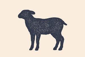 Lamb, sheep. Concept design of farm