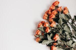 Tangerine Rose Styled Stock 105