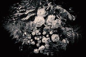 Flower Photography • v14
