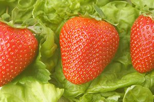Strawberries banner