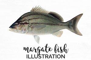 margate fish