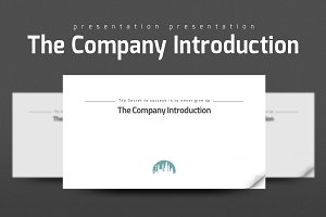 The Company Introduction
