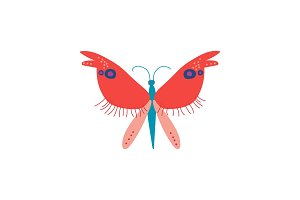 Cute Colorful Butterfly Insect, Top