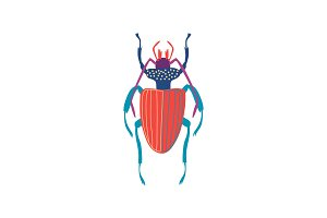 Cute Colorful Carabus Beetle Insect