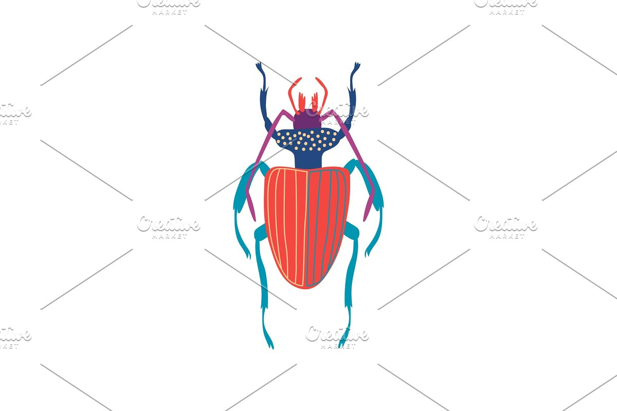 save  cute colorful carabus beetle insect