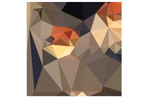 Cool Black Blue Brown Abstract Low P