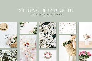 Spring Bundle 3