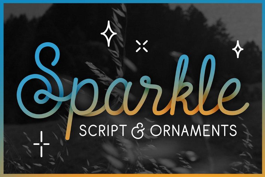 Sparkle ~ Script Fonts ~ Creative Market