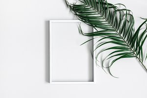 Palm leaves, photo frame