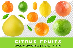 Cut out collection of citrus fruits