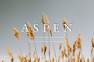 ASPEN Subtle Moody Lightroom Presets