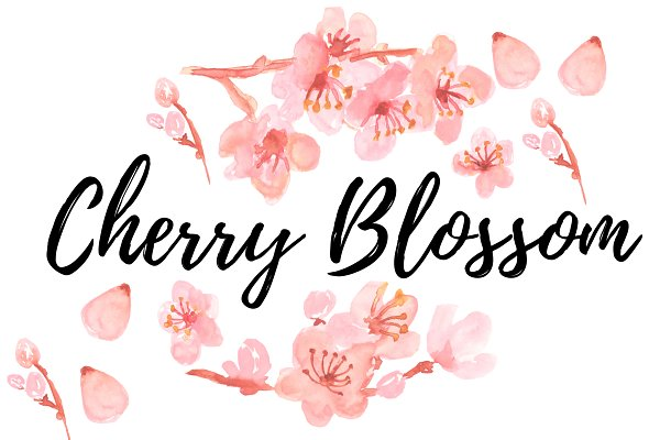 Watercolor clipart cherry blossom