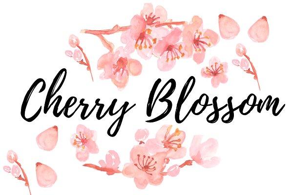 Watercolor clipart cherry blossom