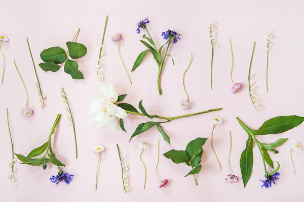 Flat-lay of lily of the valley
