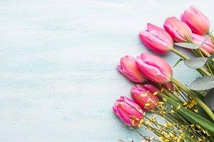 Beautiful tulips on pastel green