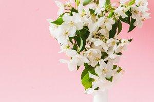 Beautiful apple blossom bouquet