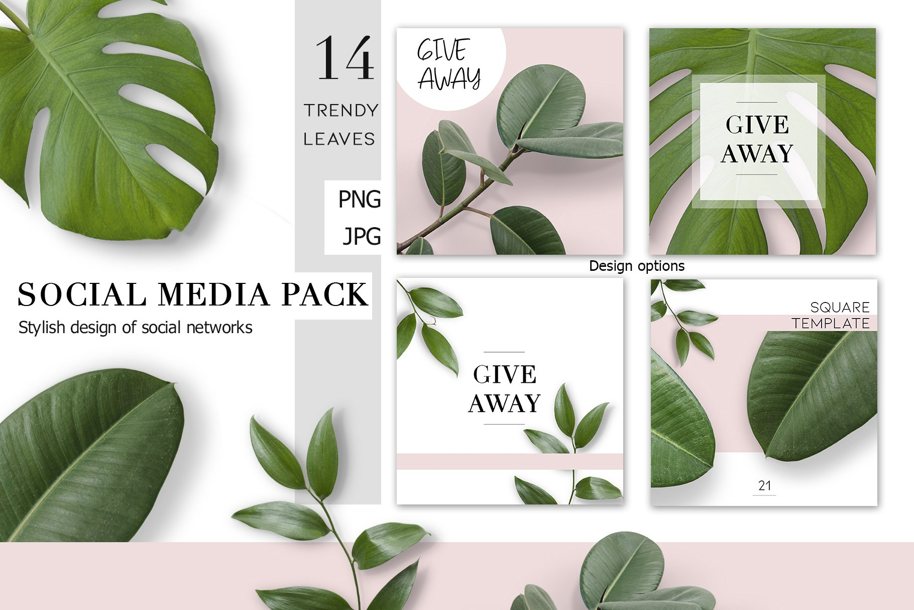Real Tropical Leaves Pre Designed Photoshop Graphics Creative Market Download 4,229 tropical leaves free vectors. real tropical leaves pre designed