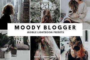 Moody Blogger Lightroom Presets