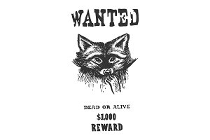 Poster with raccoon engraving