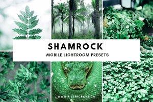 Shamrock Lightroom Presets Instagram