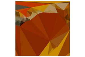 Paprika Orange Red Abstract Low Poly