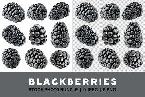 Isolated blackberries collection