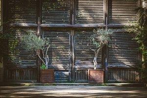 Old wooden shutter doors