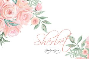 Watercolor Flowers - Sherbet