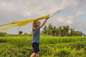 Boy launch a kite in a rice field in