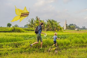 Dad and son launch a kite in a rice