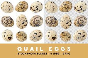 Various isolated quail eggs