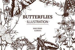 Ink hand drawn butterflies set